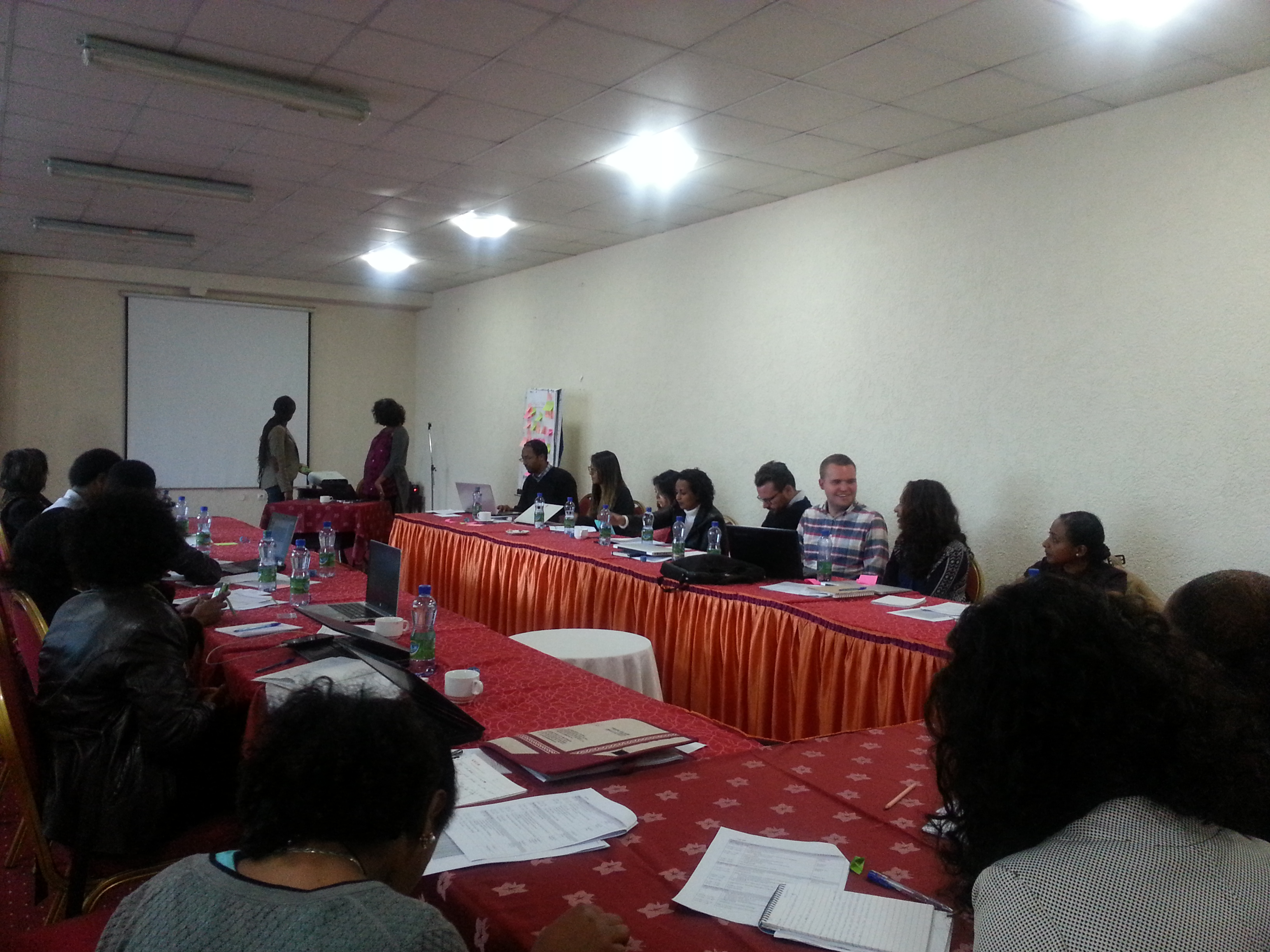 Ethiopia Safe Space Programme: Implementing Agency Orientation Workshop