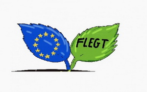 Indonesia and EU launch FLEGT licensing scheme for verified legal timber products